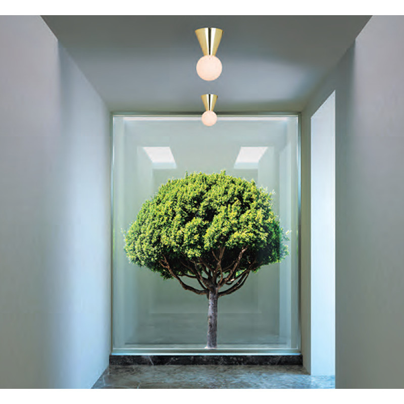 Ceiling lamp 17091