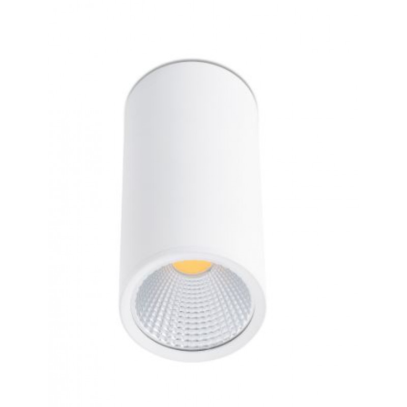 Ceiling lamp REL-P LED White