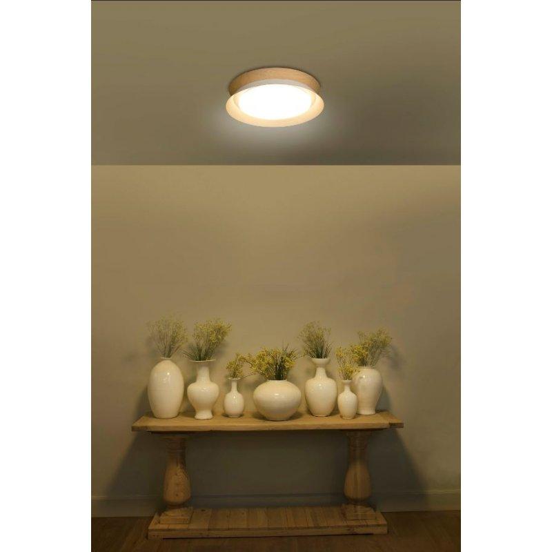 Ceiling lamp TENDER LED